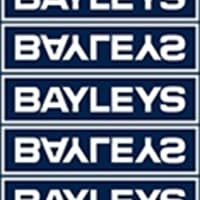 Bayleys Queenstown - Queenstown and Southern NZ Realty Limited