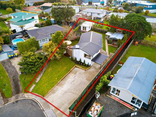 36 McPhail Street, Birkdale, Auckland