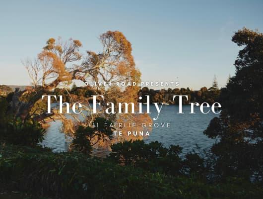 11 Fairlie Grove, Whakamarama, Bay of Plenty