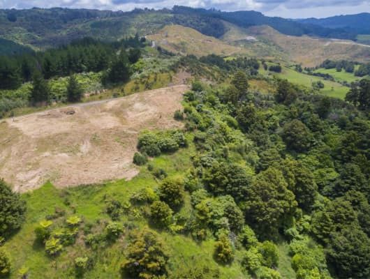 19 Hawks Ridge Rise, Dome Forest, Auckland