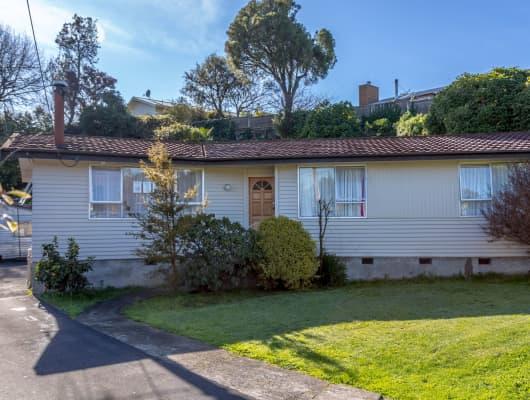 6A Oxford Street, Lansdowne, Wellington