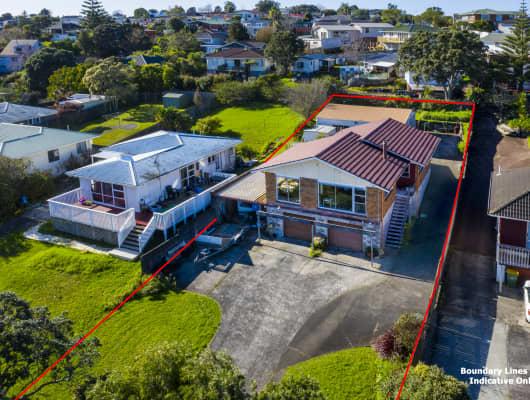 96 Whitney Street, New Windsor, Auckland