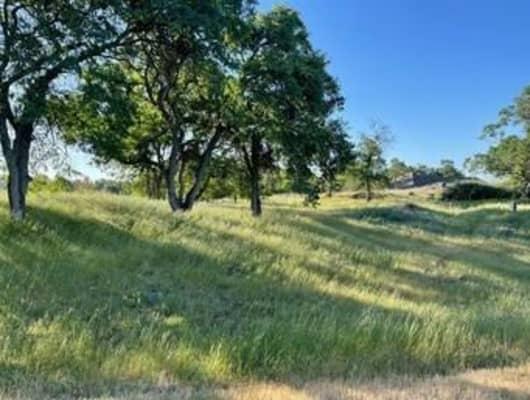 3739 Bartelink Drive, Rancho Calaveras, CA, 95252