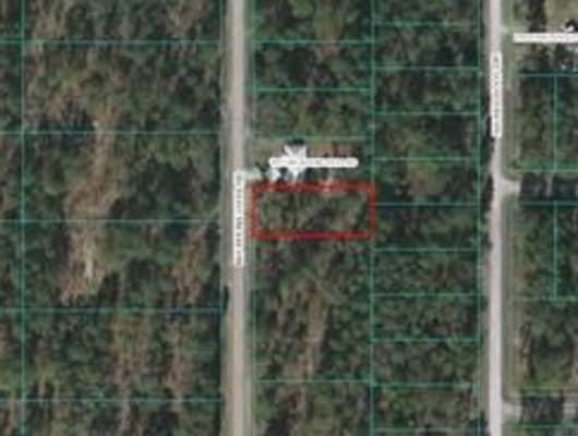 Northwest Buena Vista Road, Marion County, FL, 34431