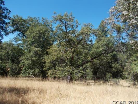 3034 Bald Mountain Rd, Calaveras County, CA, 95255