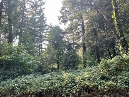 126 Tree Top Lane, Willow Creek, CA, 95573