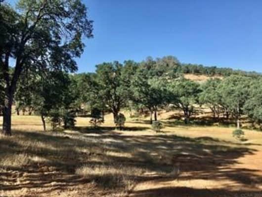 4252 Paolini Rd, Rancho Calaveras, CA, 95252
