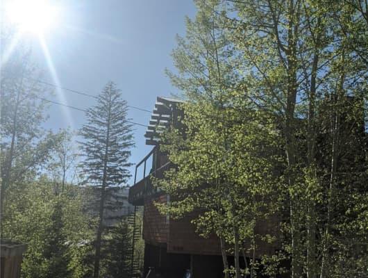 D/370 Forest Trail, Winter Park, CO, 80482