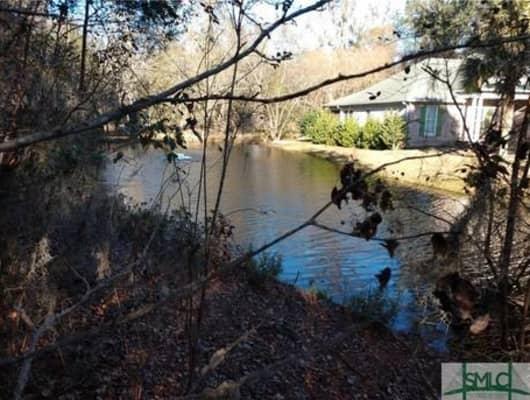 Lot 545/108 Sabal Lane, Chatham County, GA, 31405