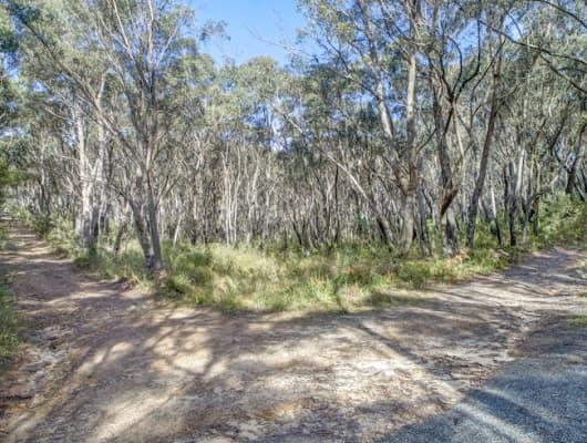 20 Killarney Avenue, Katoomba, NSW, 2780