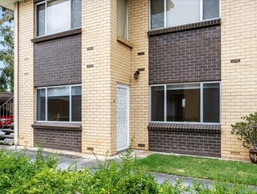 3/46 Sussex Terrace, Westbourne Park, SA, 5041