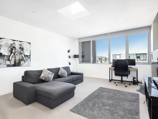 801/119 Ross St, Forest Lodge, NSW, 2037