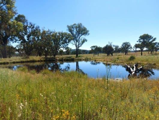 Lot 64 Retreat Road, Balala, NSW, 2358