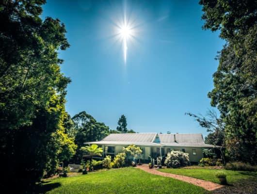161 Mount Street, Fernmount, NSW, 2454