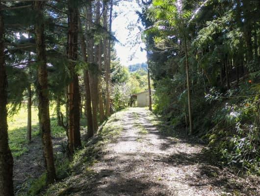 364 Dairyville Road, Upper Orara, NSW, 2450
