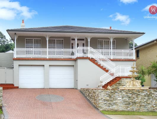 17 Isabel Street, Cecil Hills, NSW, 2171